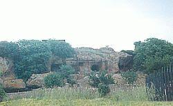 luola1