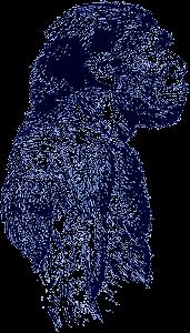 neanderthal_blue