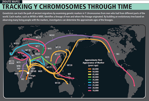 tracking-y-chromosomes