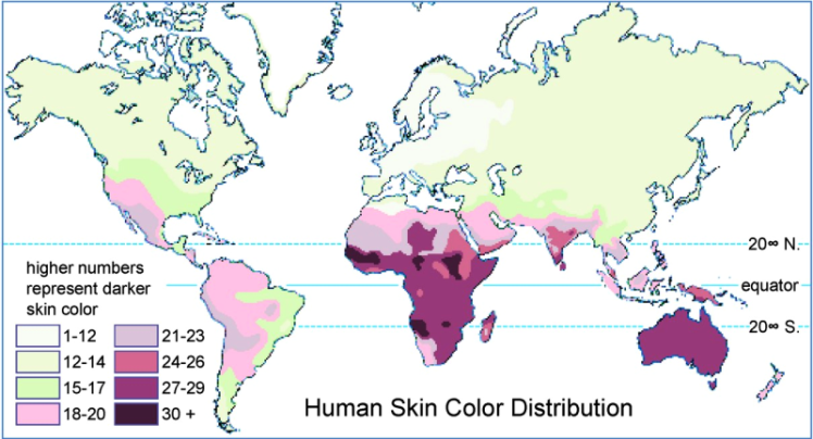 skincolor800.png